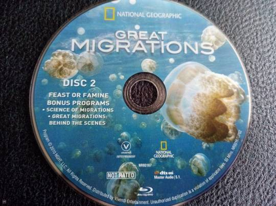 "DOCUMENTAIRE EN BLU-RAY - ""GREAT MIGRATIONS"""
