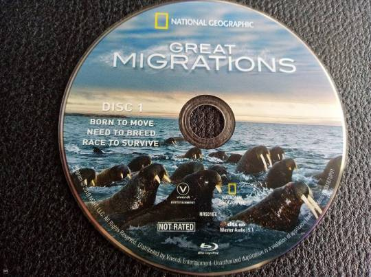 "FILM BLU-RAY - DOCUMENTAIRE ""GREAT MIGRATIONS"""